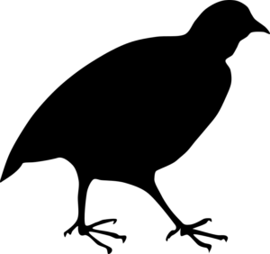Stall-Technik Logo